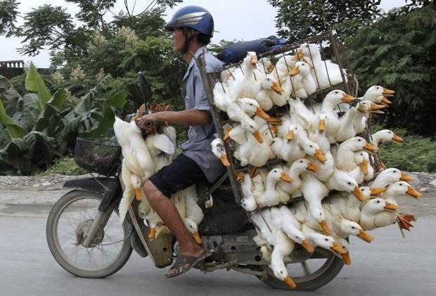 Taşımacılıkta çığır açanlar