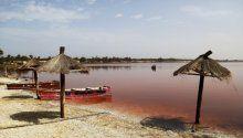 Senegal'in doğal hazinesi: Pembe Göl