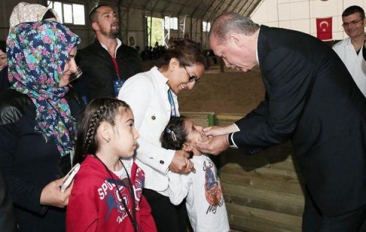 Katar Emiri'nden Erdoğan'a 53 safkan Arap atı