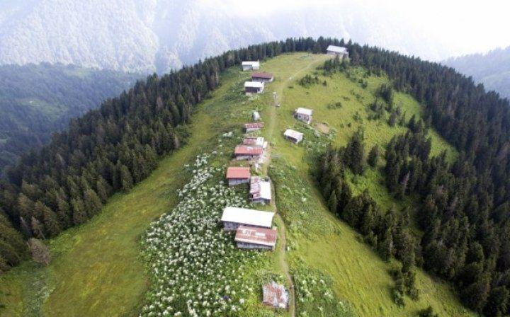 Karadeniz'de doğa tutkunlarının vazgeçilmezi Pokut ve Sal Yaylası