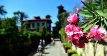 """""""Çiçek açan kent"""" Antalya görücüye çıkıyor"""