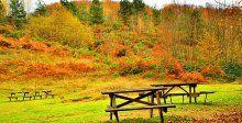 Yurdumuzdan kartpostallık sonbahar görüntüleri