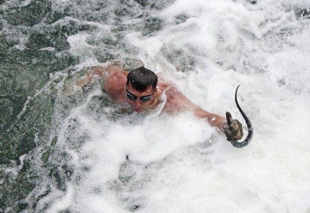 Bofa balığı ABD'yi korkuttu