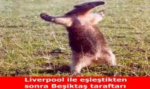 Beşiktaş-Liverpool capsleri