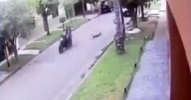 Soyguncu motosikletiyle küçük çocuğa çarptı