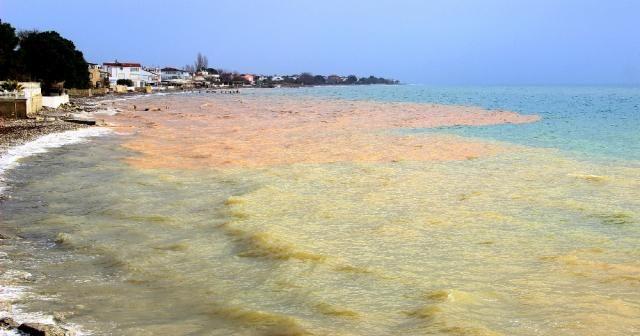 Deniz iki renge büründü