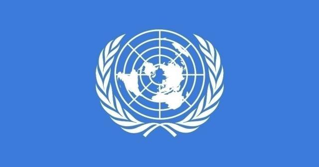 Rusya'nın Suriye tasarısı BMGK'da reddedildi