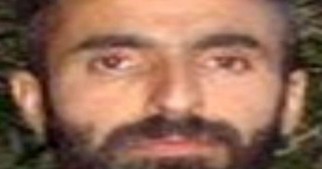 1 milyon TL ödülle aranan terörist etkisiz hale getirildi