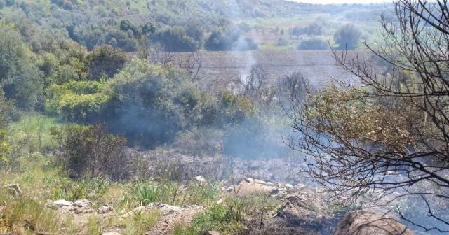 Ayvalık'taki orman yangınında 6 dönüm alan zarar gördü