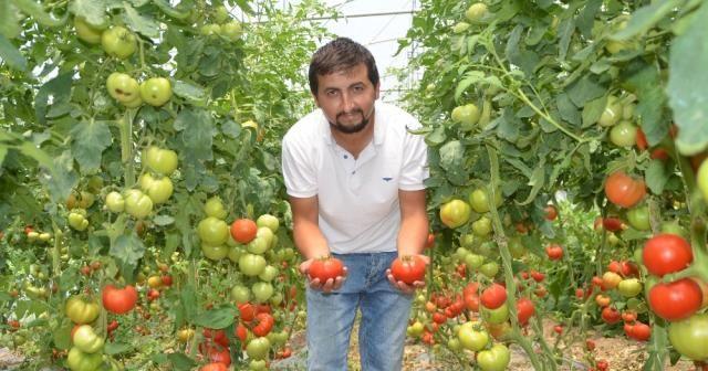 Genç çiftçi başardı