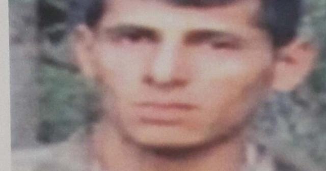 Lice'de öldürülen teröristlerden biri daha gri kategoriden