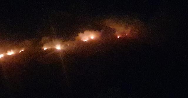 Makilik alanda başlayan yangın ormana doğru ilerliyor