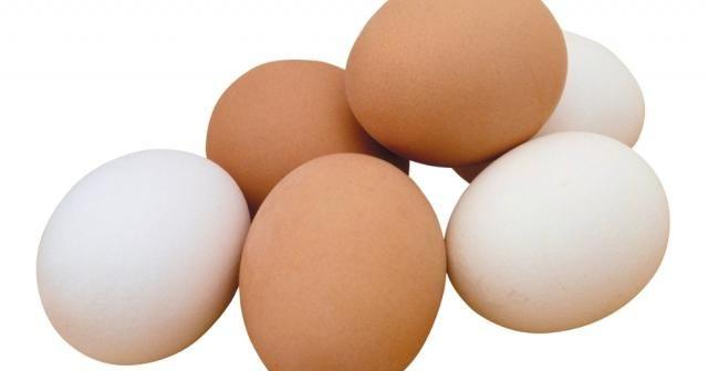 Tavuk yumurtası üretimi Mayıs'ta arttı