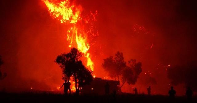 Çanakkale'deki yangının bilançosu ortaya çıkmaya başladı