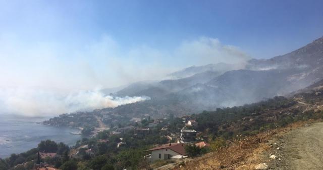 Marmara Adası'ndaki yangın kısmen kontrol altında