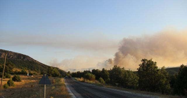 Orman yangınını söndürme çalışmaları sürüyor