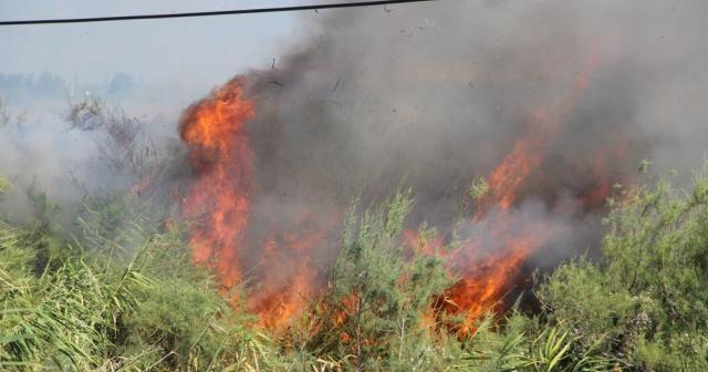 Sazlık yangını 4 saat sonra söndürüldü
