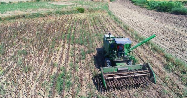 İyi ve organik tarım destek ödemeleri başlıyor
