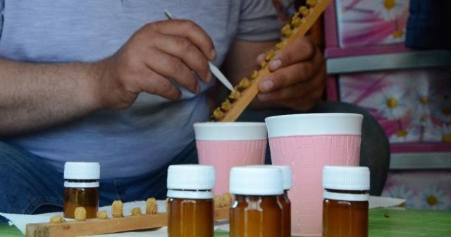 Karadeniz'de gramla üretilen arı sütü, yurt dışına ihracat yolunda