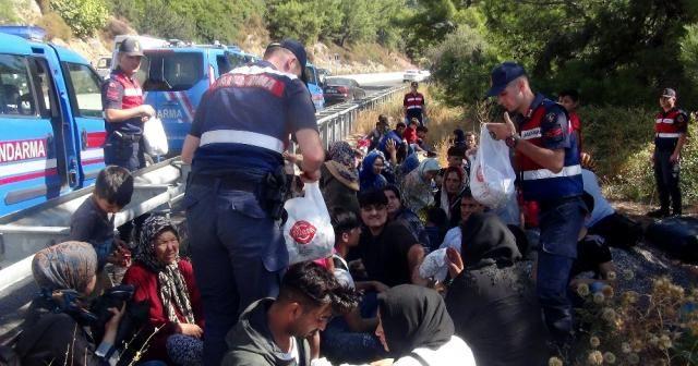 Mülteci minibüsü kaza yaptı, organizatörler 48 bin dolarla kaçtı