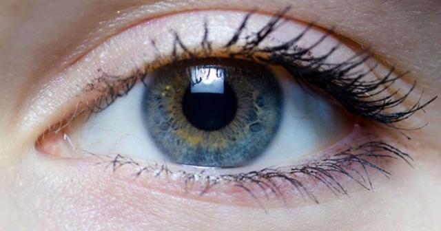 Sarı nokta hastalığı, aferez yöntemi ile durdurulabiliyor