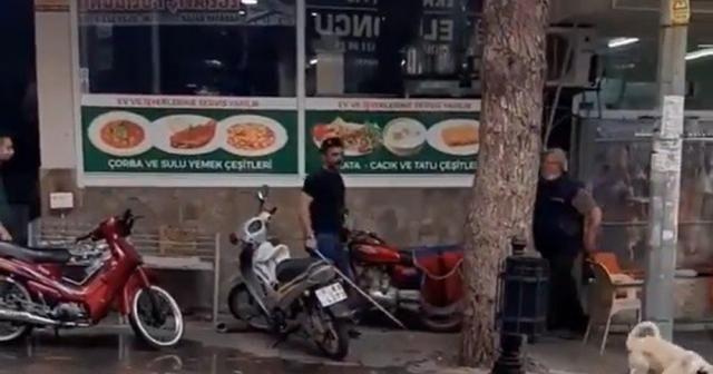 Sokak köpeğine sopayla vuran şahsa ceza yağdı