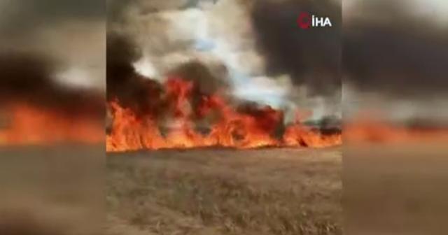 Suriye'de Esad rejimi tarım arazilerini hedef aldı