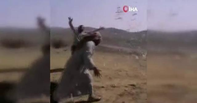 Suudi Arabistan'da çekirge istilası