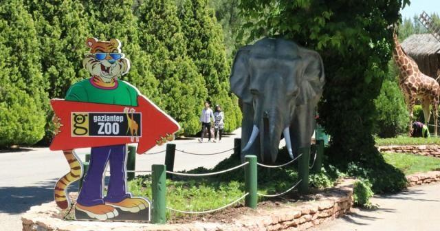 Türkiye'nin en büyük hayvanat bahçesi 2,5 ay sonra kapılarını açtı