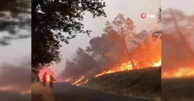 ABD'nin California eyaletindeki orman yangını günlerdir sürüyor