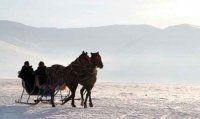 Atlı kızakçılar buzdan ekmeğini kazanıyorlar