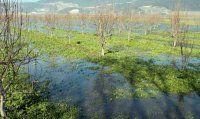 Bursa Ovası göle döndü