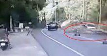 Görünmez kaza! Devrilen ağaç bakın kimi yaraladı!