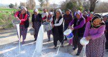 Köylü kadınlar sütleri sokağa döktü
