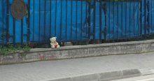 YapBolu'da oyuncak ayılı bomba alarmı