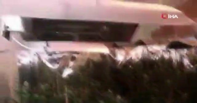 Avcılar'da evi uyuşturucu serasına çevirmişler
