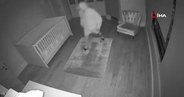 Suç makinesi hırsızlar yakalandı